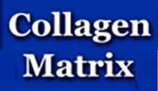 collagen matrix nf2